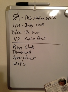 2015 plans