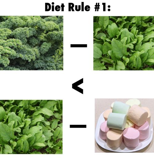DietRule1